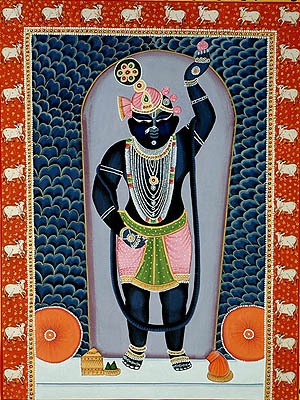 Pictures Of Shrinathji