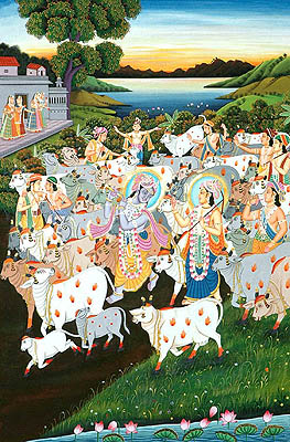 Krishna - The Lover of Cows