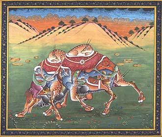 Pashu Kunjar - Composite Camel