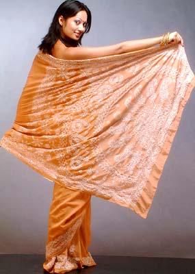 Lukhnavi Chikan Saris