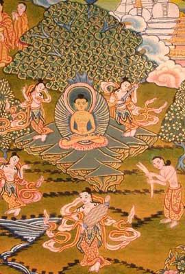 Buddha's Asceticism