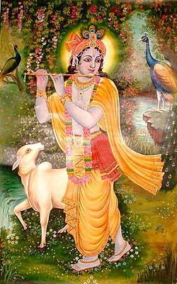Krishna the Divine Musician