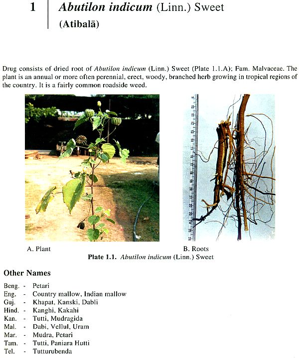 phytochemical studies on toona calantas Kaushik rajan et al: a pharmacognostical standardisation study on toona ciliata bark jpsi 1 (3), may – june 2012, 39-43 and condition under visible and artificial light, odour and for.