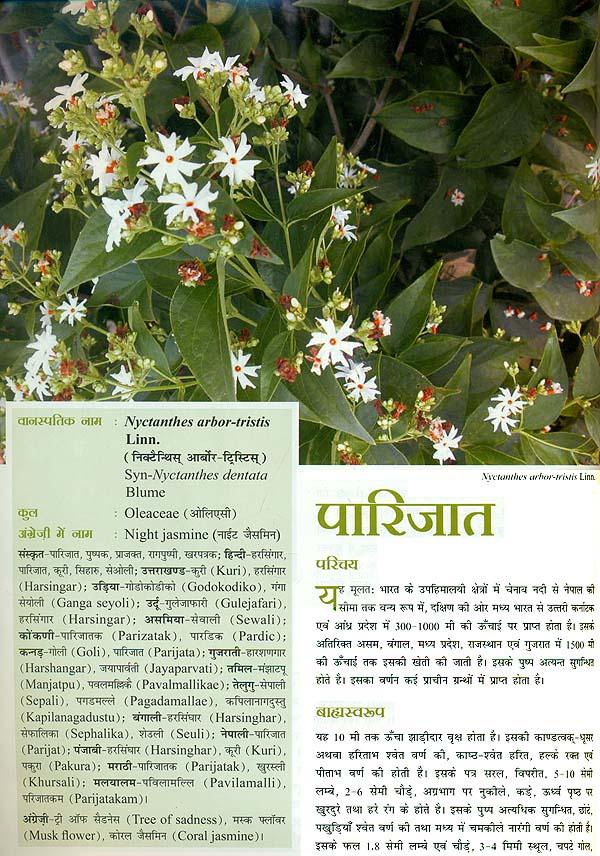 Ayurvedic books in hindi free