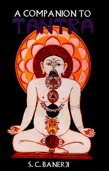 A Companion To Tantra