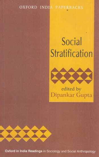 Social Stratification Essay