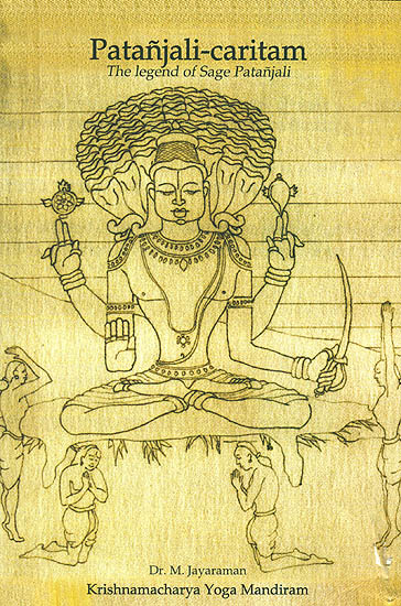 Patanjali caritam the legend of sage patanjali