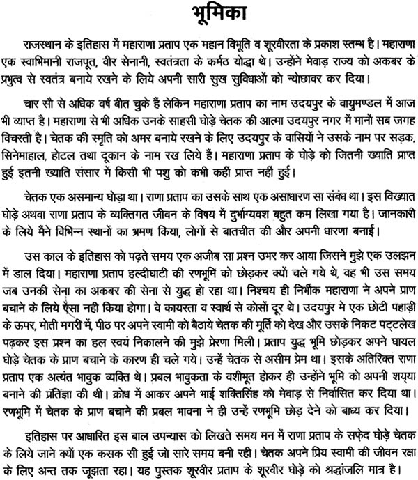 hindi essay book hindi language