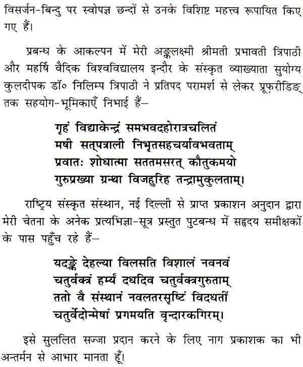 Essays in sanskrit