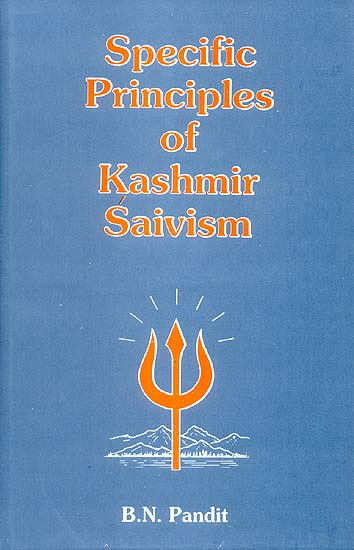 Specific Principles of Kashmir Saivism