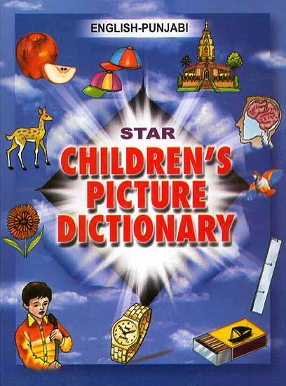 punjabi to english dictionary book
