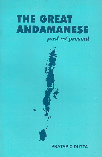 The Great Andamanese Past and Present
