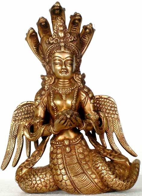 Rappresentazione di un Naga
