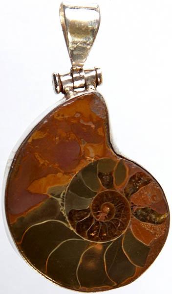 Fossil Pendant