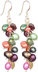 Multi-Colour Pearl Bunch Earrings with Garnet, Citrine and Carnelian