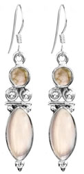 Twin Gemstone Earrings
