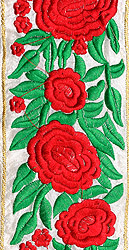 Floral Parsi Border with Embroidered Roses