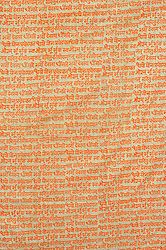 Fabric with Block-Printed Gayatri Mantra