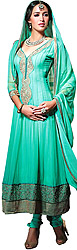Basil-Green Long Choodidaar Suit with Ari Embroidery in Golden Thread