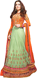 Orange and Pastel-Green Designer Bridal Celina Anarkali Suit with Metallic Thread Embroidery and Two-Layered Border