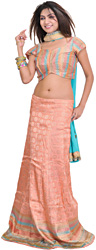 Coral-Almond Banarasi Lehenga Choli with Woven Flowers and Embroided Dupatta