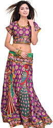 Two-Piece Ghagra Choli from Rajasthan with Woven Flowers and  Embroided Patch