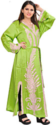 Parrot-Green Robe from Kashmir with Ari Embroidered Paisleys