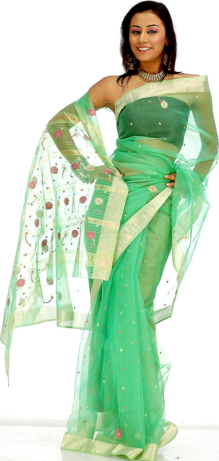 Image credit: http://www.exoticindiaart.com/saris/bright_green_chanderi_sari_with_multicolor_bootis_yo88.jpg