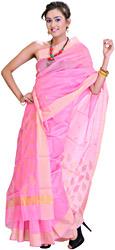 Lemonade-Pink Chanderi Sari With Golden Woven Leaves