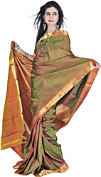 Fluorite-Green Handwoven Kanjivaram Sari with Golden Zari Weave on Border and Aanchal