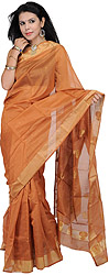 Amber-Brown Chanderi Sari with Hand Woven Bootis in Golden Thread