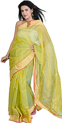 Jade-Lime Chanderi Sari with Hand Woven Flowers and Golden Border