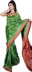 Forest-Green Sambhalpuri Sari from Orissa with Ikat Weave