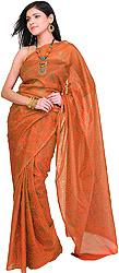 Bandhani Tie-Dye Sari from Jodhpur