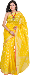 Cyber-Yellow Banarasi Sari with All Over Woven Flowers in Golden Thread