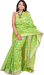 Banarasi Brocaded Sari with Golden Booties All-Over