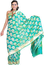 Fluorite-Green Banarasi Sari with Hand-Woven Booties and Plain Border