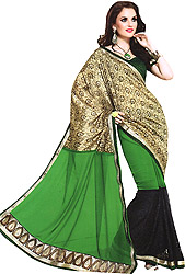 Forest-Green and Black Designer Wedding Sari with Patch Border and Sequins