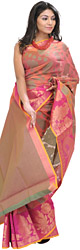 Garnet-Rose Banarasi Sari with Woven Paisleys and Roses on Border