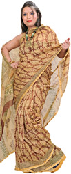 Friar-Brown Chanderi Sari with Kalamkari Printed Leaves All-Over