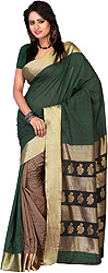 Green and Brown Striped Patli Sari with Woven Flowers on Aanchal