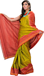 Green and Red Patan Patola Sari from Gujarat
