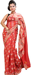 Hibiscus-Red Bandhani Tie-Dye Sari from Jodhpur with Brocaded Flowers