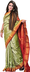 Lint-Green Sari from Bangalore with Woven Bootis and Brocaded Aanchal