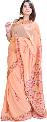 Peach-Fuzz Sari from Kashmir with Floral Ari-Embroidery
