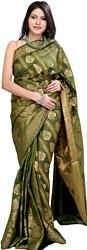 Vineyard-Green Banarasi Sari with Woven Leaves in Golden Thread
