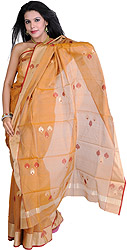 Nugget-Colored Handloom Chanderi Sari With Woven Paan and Golden Border