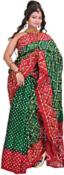 Bandhani Tie-Dye Sari from Jodhpur with Embroidery in Golden Thread