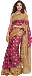 Butternut and Deep Orchid Shaded Bandhani Tie-Dye Sari from Rajasthan with Woven Border
