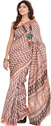 Cream-Pink Chanderi Sari with Kalamkari Printed Paisleys All-Over